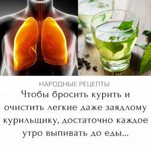 Народные средства для чистки легких