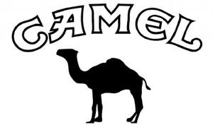 Camel сигареты официальный сайт