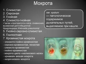 Народные рецепты при коричневой мокроте